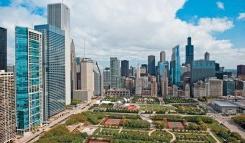 芝加哥包机